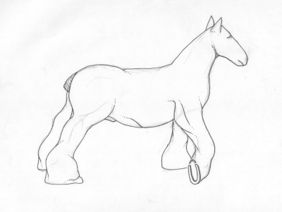 dessin cheval epure